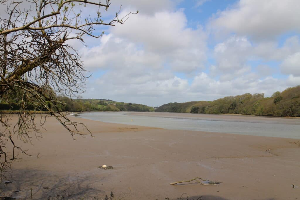 Malpas to St Clement Walk - Tresillian River