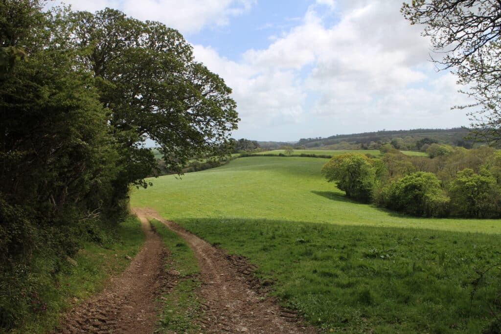 Malpas to St Clement Walk - Crossing a field